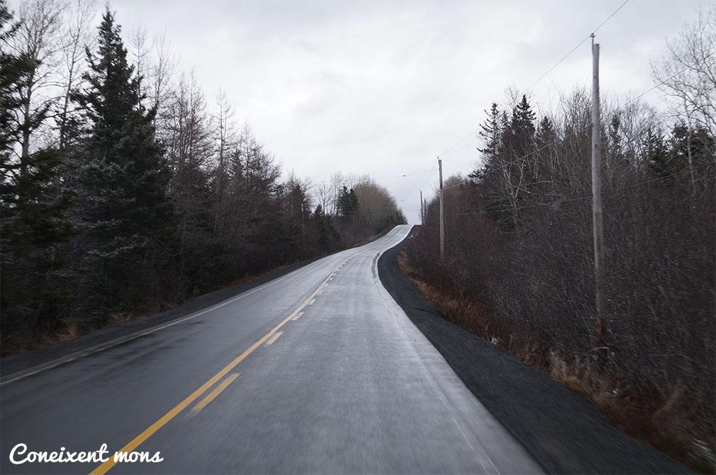 Carreteres infinites enmig del bosc - Nova Scotia