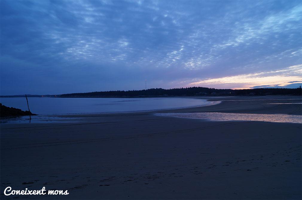 Mar i platja, pluja i neu