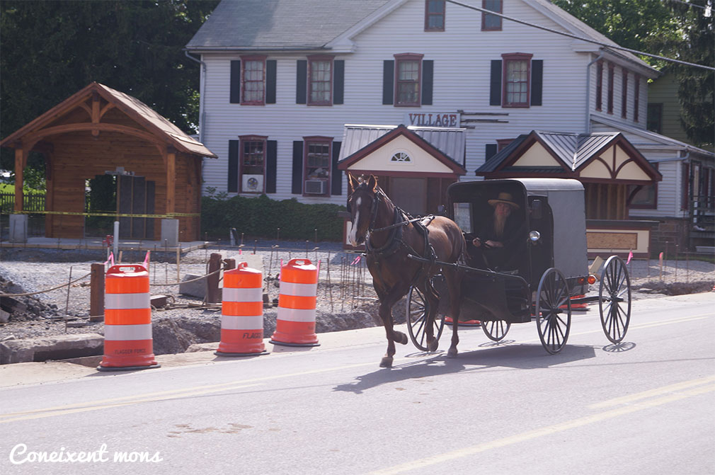 Amish barbut, símbol de matrimoni, Intercourse - Pennsylvania