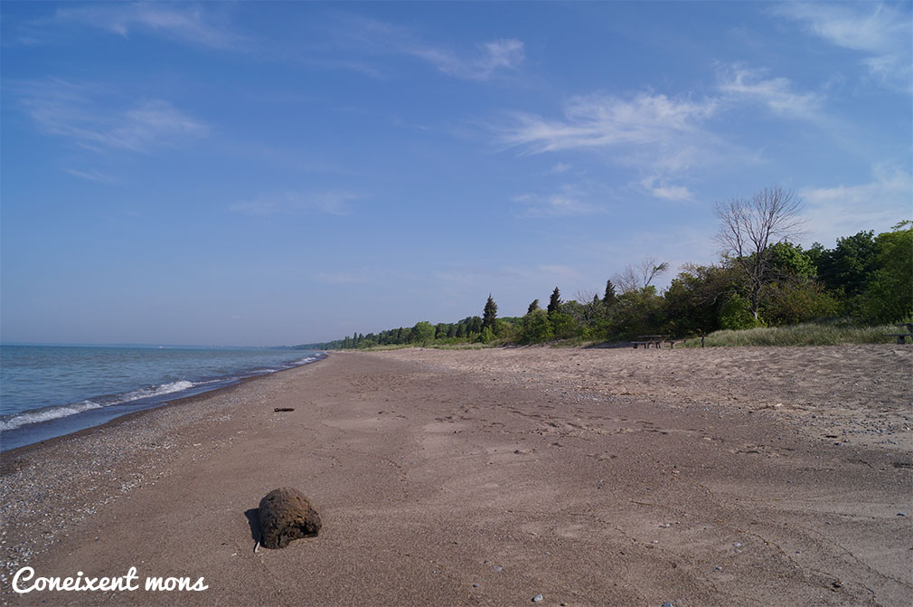 Point Pelee National Park - Ontario
