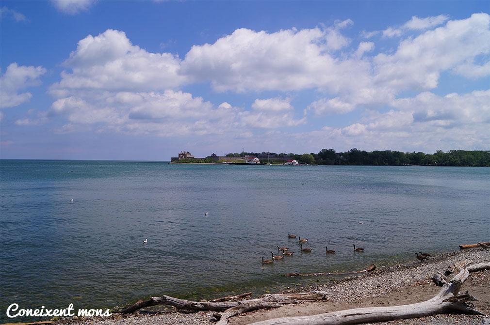 Llac Ontario - Niagara-on-the-Lake - Ontario