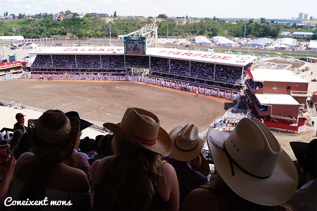 Rodeo - Calgary - Alberta
