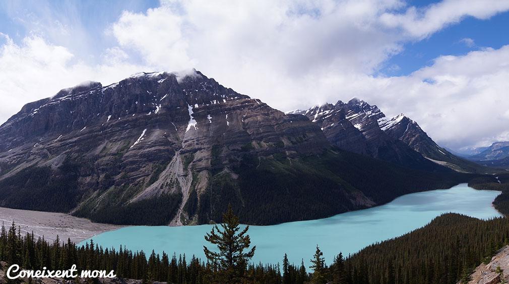 Llac Peyto - Banff National Park - Alberta