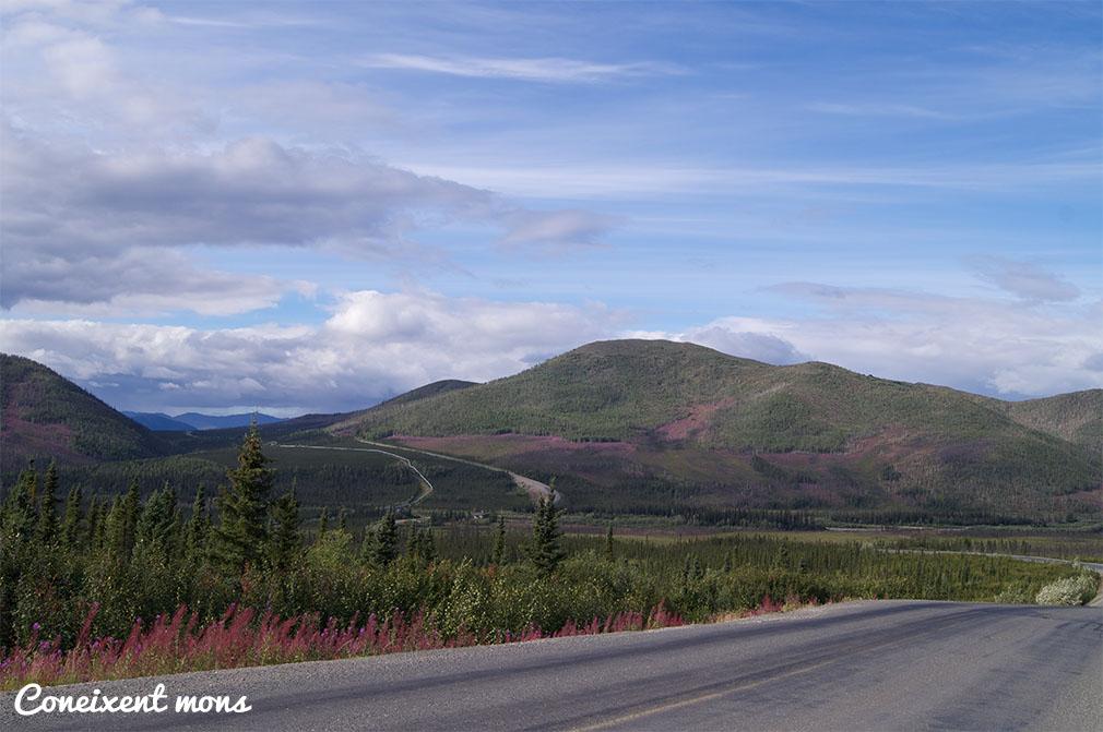 Muntanyes tenyides de rosa - Alaska