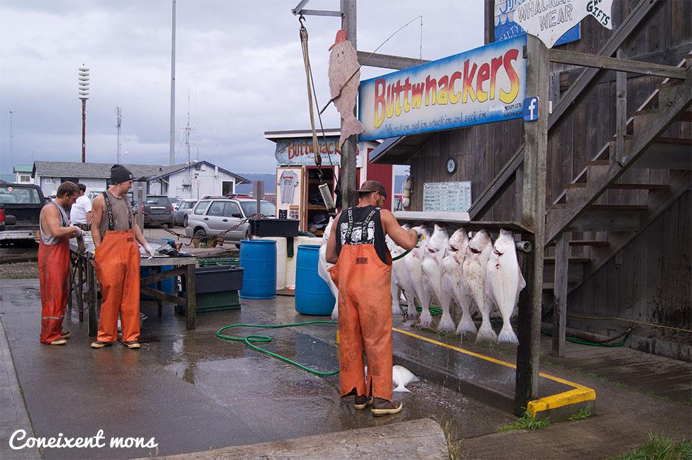 Homer, ciutat mundial de l'halibut - Alaska