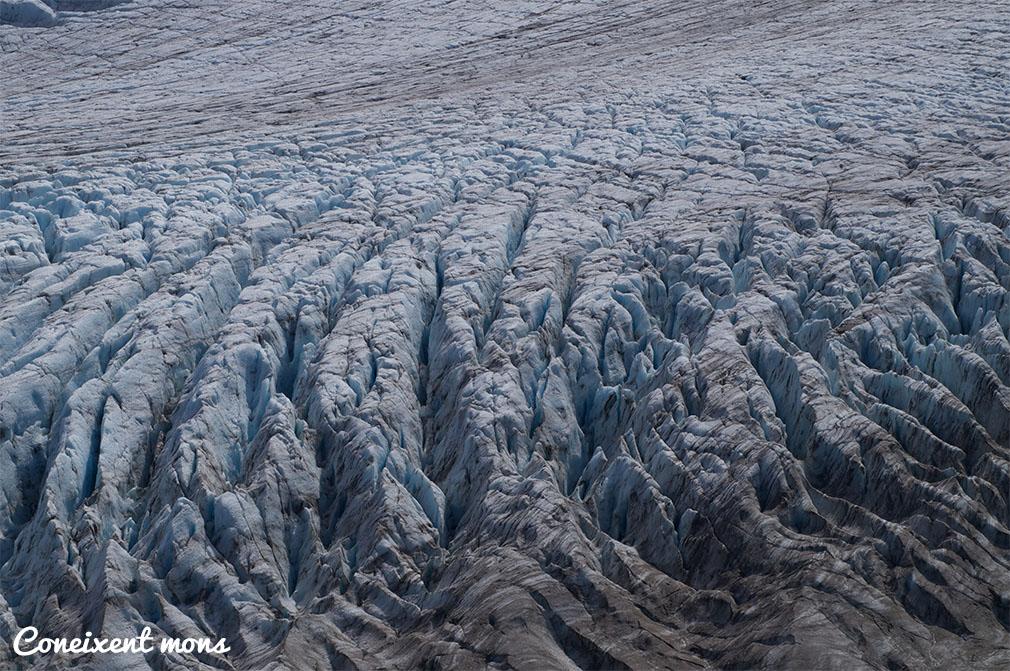 Magnífiques cicatrius del glaciar - Alaska