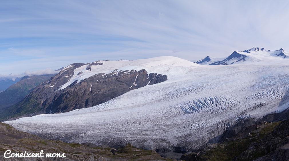 Exit Glacier - Alaska