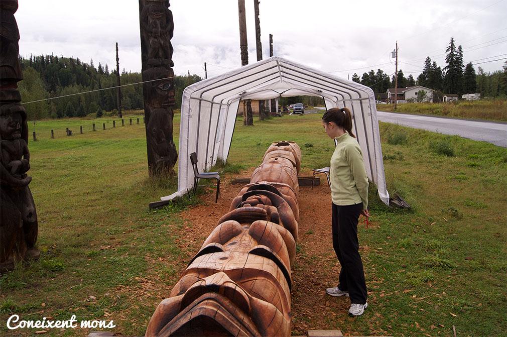 Els primers tòtems van ser extrets de l'arbre mature cedar i utilitzats en les cerimònies dels clans Potlach del nord-oest del Pacífic.