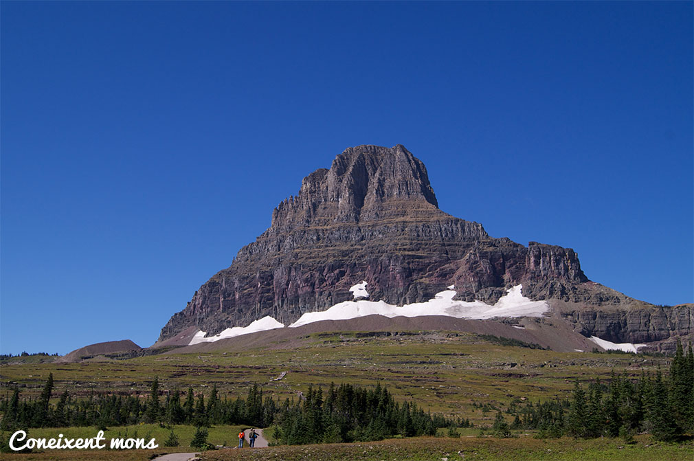 Logan Pass - Waterton-Glacier National Park - Montana