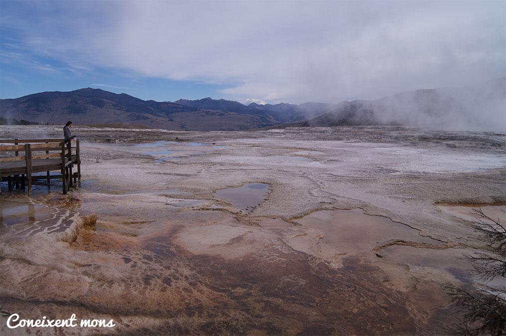 Mammoth Hot Springs - Yellowstone National Park - Wyoming
