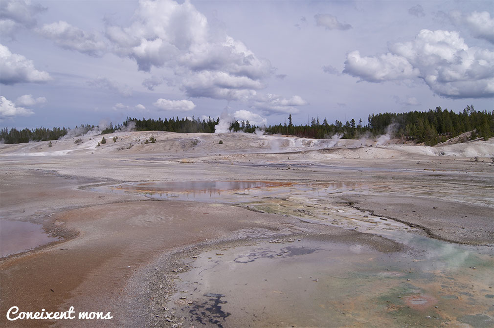 Norris Geyser Basin - Yellowstone National Park - Wyoming