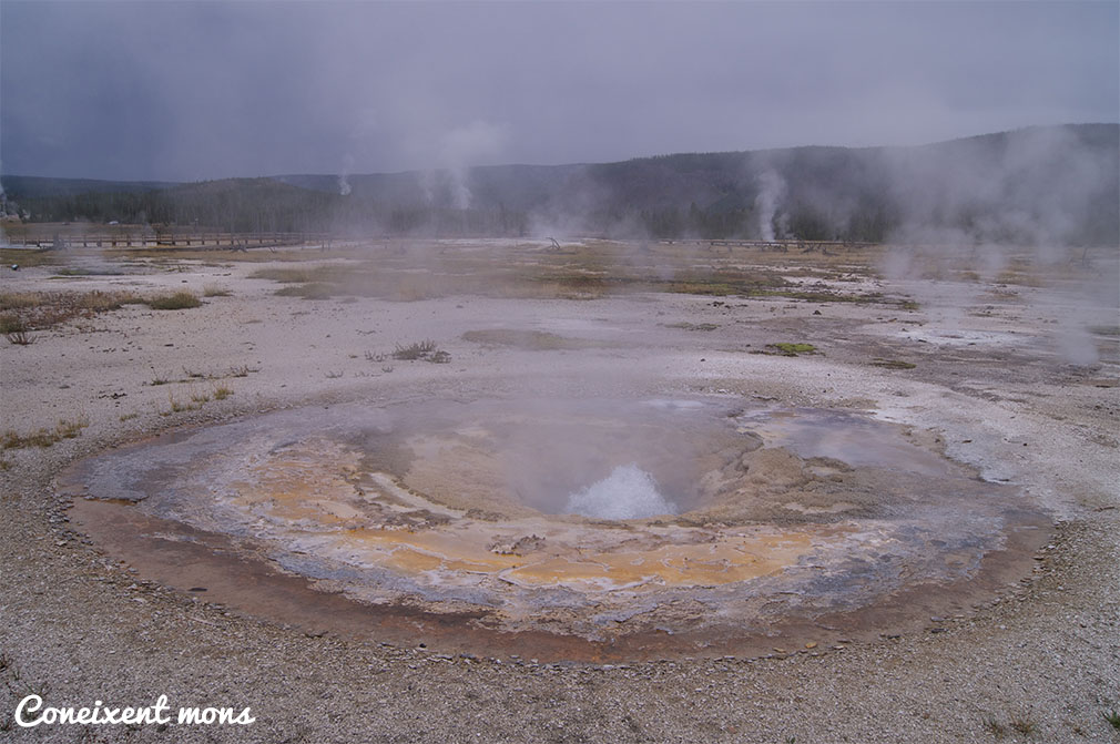 Old Faithful Area - Yellowstone National Park - Wyoming
