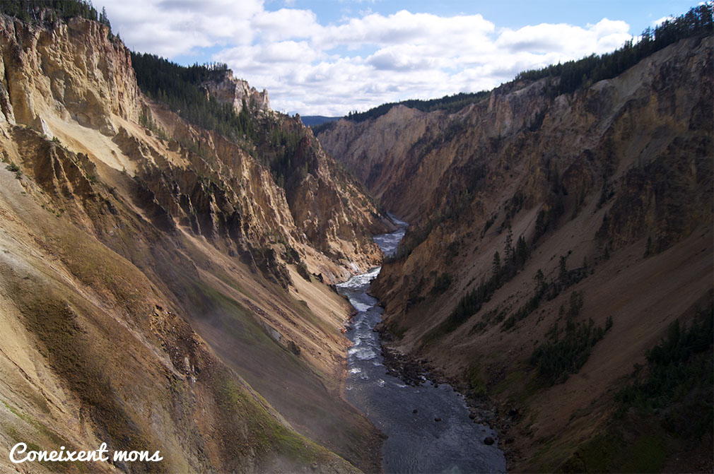 Grand Canyon - Yellowstone National Park - Wyoming