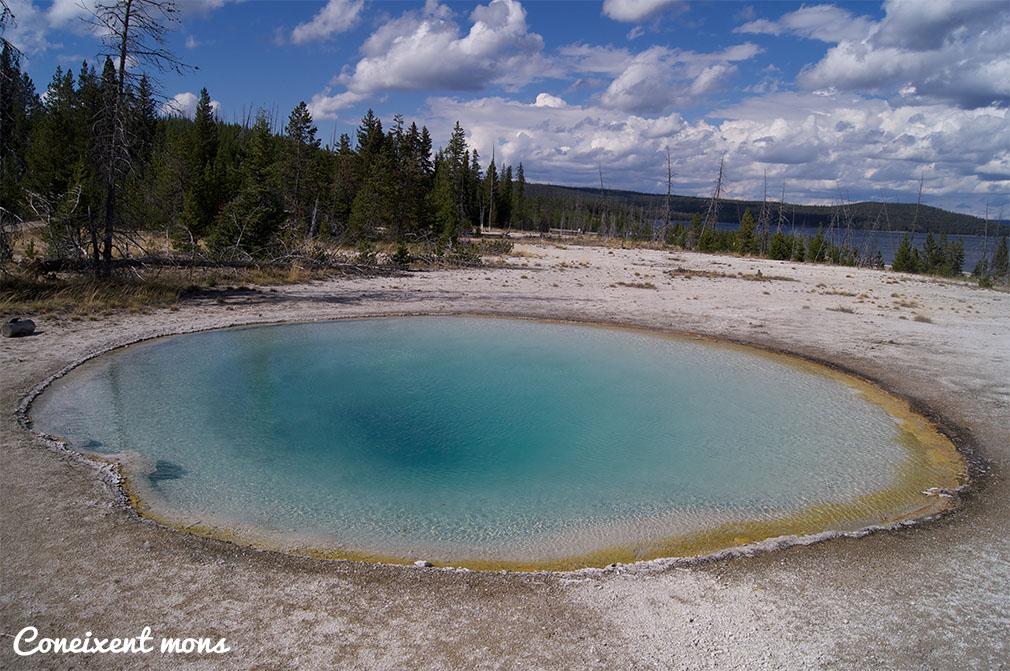 Al centre, on l'aigua està més calenta, és d'un profund color blau que es va tornant més pàl·lid segons l'aigua s'aproxima a les vores. Allà agafa un to verd degut a la proliferació d'algues. Cada tipus de bactèria s'adapta a un tipus de temperatures.