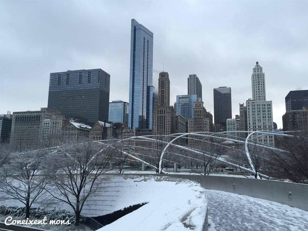 L'arquitectònica Chicago
