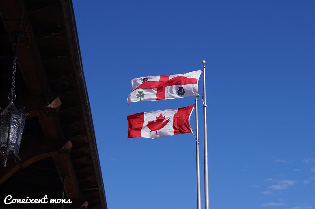 Treballar a Canadà (o a Mont-real)